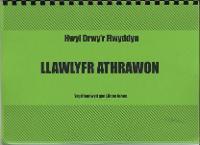 Cyfres Hwyl Drwy'r Flwyddyn: Llawlyfr Athrawon/Teachers' Handbook (Paperback)