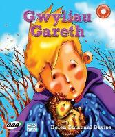 Pen-i-Waered: Anifeiliaid Anwes/Gwyliau Gareth (Paperback)