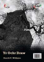 Cyfres y Fflam: Yr Ochr Draw/Yr Eneth Gadd ei Gwrthod (Paperback)