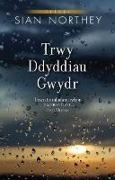 Trwy Ddyddiau Gwydr (Paperback)