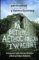 Pa Beth yr Aethoch Allan i'w Achub (Paperback)