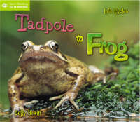 Life Cycles: From Tadpole to Frog - QED Start Reading and Thinking S. (Paperback)