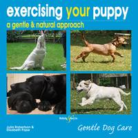 Exercising Your Puppy (Paperback)