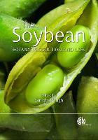 Soybean: Botany, Production and Uses - Botany, Production and Uses (Hardback)