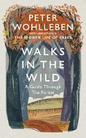 Walks in the Wild: A guide through the forest with Peter Wohlleben (Hardback)