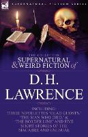 The Collected Supernatural and Weird Fiction of D. H. Lawrence-Three Novelettes-'Glad Ghosts, ' the Man Who Died, ' the Border Line'-And Five Short St (Paperback)