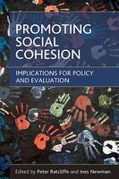 Promoting social cohesion: Implications for policy and evaluation (Hardback)