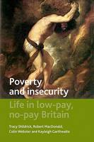 Poverty and insecurity: Life in low-pay, no-pay Britain - Studies in Poverty, Inequality and Social Exclusion Series (Hardback)