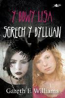 Cyfres y Dderwen: Y Ddwy Lisa - Sgrech y Dylluan (Paperback)