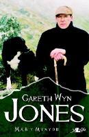 Mab y Mynydd (Paperback)