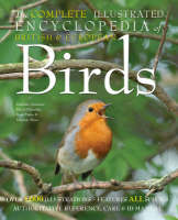 The Complete Illustrated Encyclopedia of British Birds - The Complete Illustrated Encyclopedia S. (Paperback)