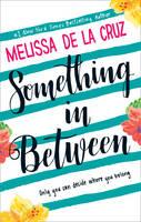 Something in Between (Paperback)
