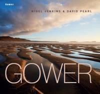 Gower (Hardback)