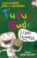 Llyfr Stwnsh - Tudur Budr (Paperback)