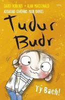 Tudur Budr: Ty Bach (Paperback)