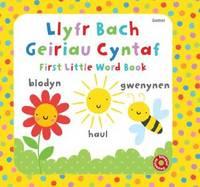 Llyfr Bach Geiriau Cyntaf (Hardback)