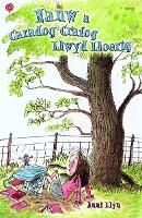 Cyfres Lolipop: Nanw a Caradog Crafog Llwyd Lloerig (Paperback)