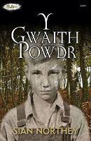 Cyfres Strach: Y Gwaith Powdr (Paperback)