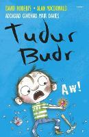 Tudur Budr: Aw! (Paperback)