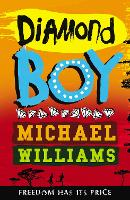 Diamond Boy (Paperback)