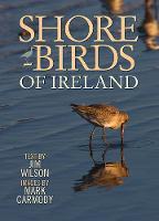 Shorebirds of Ireland (Paperback)