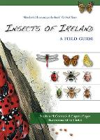 Insects of Ireland (Paperback)