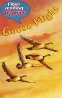 I Love Reading Phonics Level 5: Goose Flight - I Love Reading Phonics (Hardback)