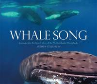 Whale Song: Journeys into the Secret Lives of the North Atlantic Humpbacks (Hardback)