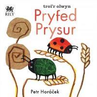 Pryfed Prysur (Hardback)