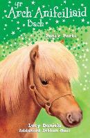 Cyfres yr Arch Anifeiliaid Bach: Poni'r Parti (Paperback)