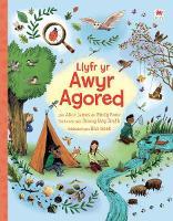 Llyfr yr Awyr Agored (Paperback)