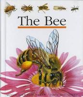 The Bee - My First Discoveries (Hardback)