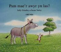 Pam Mae'r Awyr yn Las? (Hardback)