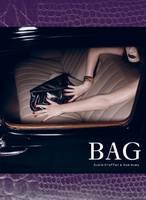 Bag (Hardback)