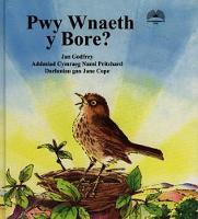 Pwy Wnaeth y Bore? (Hardback)