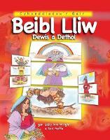 Beibl Lliw Dewis a Dethol (Hardback)