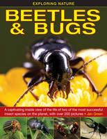 Exploring Nature: Beetles & Bugs (Hardback)