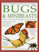 Illustrated Wildlife Encyclopedia: Bugs & Minibeasts (Hardback)