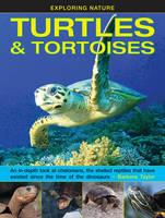 Exploring Nature: Turtles & Tortoises (Hardback)