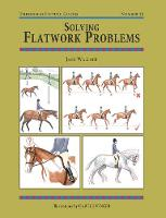 Solving Flatwork Problems - Threshold Picture Guide No. 25 (Paperback)