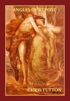 Angles of Repose (Paperback)