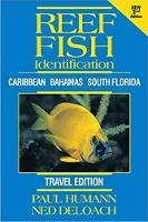Reef Fish Identification -- Travel Edition