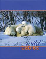 Wild Babies (Hardback)