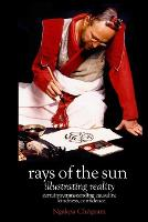 Rays of the Sun: Illustrating Reality (Paperback)