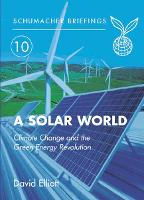 Solar World: Climate Change and the Green Energy Revolution - Schumacher Briefings (Paperback)