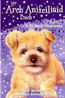 Cyfres yr Arch Anifeiliaid Bach: Y Ci Bach Chwareus (Paperback)