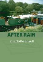 After Rain (Paperback)