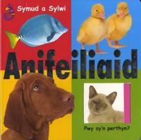 Symud a Sylwi: Anifeiliaid (Hardback)