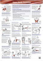 Upper Body Stretches (Wallchart)