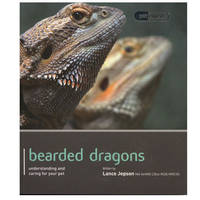 Bearded Dragon - Pet Expert